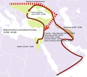 Migracja kultury oryniackiej - wariant II